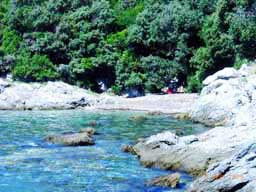 Island Cres Croatia - secluded beach Lucica under Stivan, easy 10 min walk from Marascica